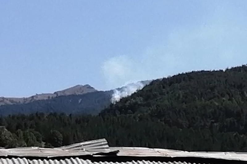 Refahiye'de orman yangını