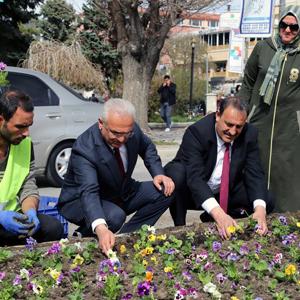 Erzincan çiçek açacak